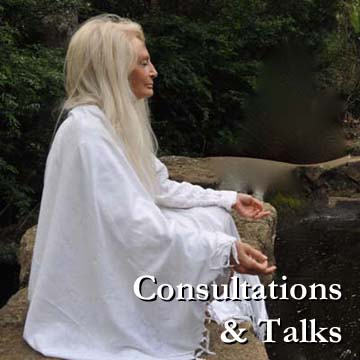 Consultations and Talks